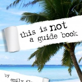 Why Guidebooks Might Be Useless
